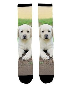 Black & White Lab Puppy Sublimation Socks - Toddler & Kids