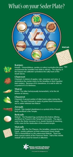Passover Seder Infographic