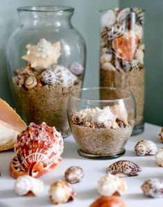 Crafts from shells. Ideas and workshops. DIY crafts from shells: where and how to apply shells brought from the sea DIY Christmas tree toys from shells Seashell Art, Seashell Crafts, Beach Crafts, Sand Crafts, Diy Crafts, Cleaning Sea Shells, Tablet Recipe, Clean Baking Pans, Cleaning Painted Walls