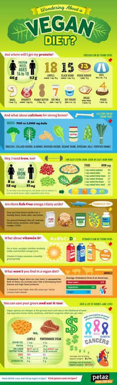 Wondering About a Vegan Diet