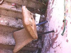 """Segnalazione: """"Nel centro storico di Grottaglie edifici abbandonati habitat ideale di topi ed insetti"""""""