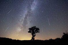 Parque de cielos estrellados Zselic, Hungría