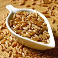 Il kamut contro le allergie alimentari