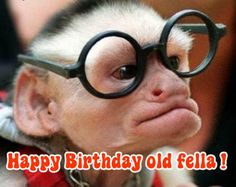 funny birthday images for men - Google Search