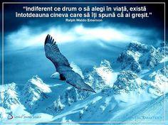 eagle pictures free for desktop, Braelyn Sinclair Free Desktop Wallpaper, Wallpaper Downloads, Wallpapers, Eagle Pictures, Ralph Waldo Emerson, Desktop Pictures, Bald Eagle, Blog, Landscape