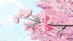 anime sakura tree - Tìm với Google