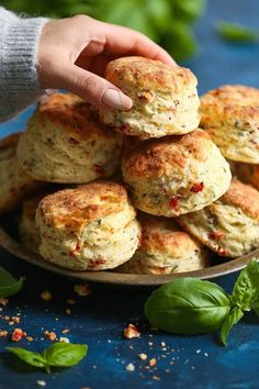 Sun Dried Tomato Parmesan Biscuits - These savory biscuits are simply irresistible! Warm, flaky, buttery and packed with so much flavor from the sun dried tomatoes, fresh basil, and Parmesan cheese. Biscuit Bread, Biscuit Recipe, Savoury Biscuits, Savory Scones, Dried Tomatoes, Sun Dried Tomato Bread, Snacks Für Party, Baking Recipes, Breakfast Recipes