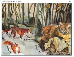 FAT 2 Piece to educate 5-10 year olds about wildlife found in the UK, in and around their homes.