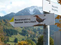 Traumhafte schöne Kinderwagenwanderung bei Rettenberg im Allgäu