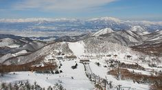 The Shiga Kogen Ski Area is a group of 21 ski resorts that have joined together to create the largest combined ski area in Japan.
