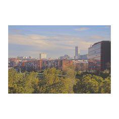 Madrid al manzanares (V) #Madrid #spain #madridrio #citylife #cityview #building #edificios #igs #igers #igdaily #igworld #igersspain #igersmadrid #fullframe #canon6D #ef24mm