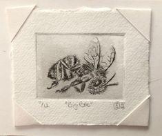 Artist: Elizabeth Tristram Artwork: Big Bee Medium: Dry point etching Edition: 12 Print Size: 3 cm (h) x 4 cm (w) Paper Size: 5 cm (h) x 6 cm (w) Print, Lovers Art, Miniatures, Online Art, Artwork, South African Artists, Original Artwork
