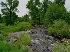 TBD Routt County Road 80 Hayden Colorado, 81639 | MLS# 138125 Land for sale Details
