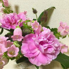 5月のアレンジ Flower Arrangements, Flowers, Plants, Floral Arrangements, Plant, Royal Icing Flowers, Flower, Florals, Floral