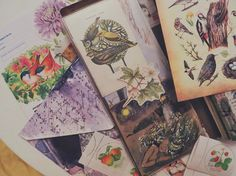 23 y.o. • paper, north & cat lover ↟🌿• thecloudberrycat@gmail.com☽☾
