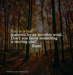 You're a leaf scattered by an invisible wind. Don't you know something is moving you? Rumi