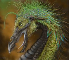 Feathered Dragon – Karla Egley