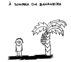 16 Portuguese Sayings That Don't Make Any Sense 16. Under the banana tree shade = with no worries (Portuguese from Portugal)