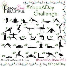 November Instagram Challenge Recap! yoga, yoga challenge, #yogaAday, yoga photos yoga pics