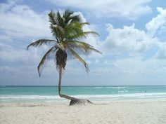 Tulum, Mexico | Tales from the Yucatan Peninsula | No Apathy Allowed