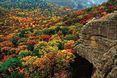 Autumn in the Ozark National Forest at Sam's Throne