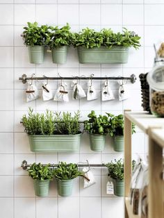 DIY Small Space Kitchen Herb Garden