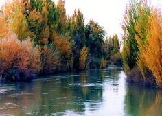 Río Chubut en Gaimán.