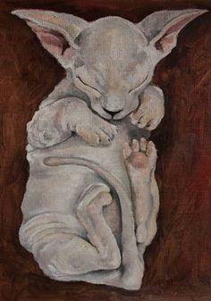 Oilpainting kitten sphinx #art #oilpainting #oil #kitten #animal #nature #sphinx #color #print #originalart #sketch #for sale #животное #сфинкс #котенок #кот #лысина #принт #природа #картина #масло