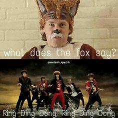 Haha! shinee <3