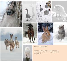 Bindatang- binatang ini tambah lucu di salju