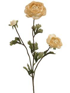 "27"" Silk Ranunculus in Beige | Silk Flowers"