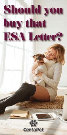 Handy Dog Training Tips Esa Letter, Cute Dogs, Cute Babies, Emotional Support Animal, Teacup Puppies, Dog Items, Dog Years, Dog Care Tips, Girl Photo Poses