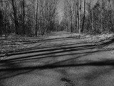 I walk here every day I my life but never saw life in black and white