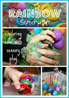 Rainbow Sensory Bin | Little Bins for Little Hands