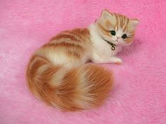 Hey, I found this really awesome Etsy listing at https://www.etsy.com/no-en/listing/221141895/needle-felted-cute-fluffy-kitten-orange