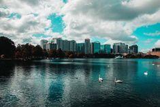 Qué hacer en Orlando además de los parques - Postcards From Ivi Madame Tussauds, Clearwater Beach, Disney Springs, Viaje A Orlando Florida, Effects Of Black Mold, Orlando Tourism, Orlando Weather, Myakka River State Park, Restaurants In Orlando