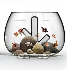 Amazon.com : Holuck Mini fish bowl,