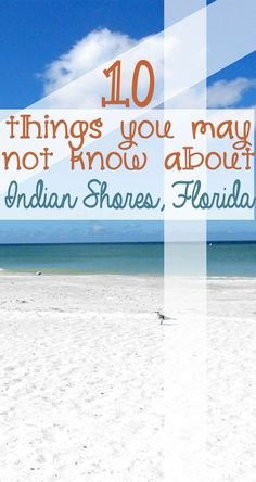 How much do you know about Indian Shores Florida? We have a few lesser-known facts that will intrigue you. Indian Shores Beach, Indian Shores Florida, Indian Rocks Beach Florida, Beach Vacation Tips, Florida Vacation, Florida Beaches, Beach Trip, Vacation Ideas, Beach Vacations