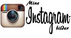 Dagens Instagrambilder: Lakseender