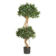 Sweet Bay Double Ball Topiary Silk Tree - Designed to add energy and character to your space, the Sweet Bay Double Ball Topiary Silk Tree is expertly crafted and manicured to make bold stateme...