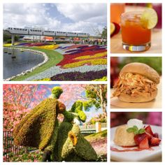 The #Epcot Flower and Garden Festival returns 3/5-5/18! Book with #MagicalTravel and save up to 30% on rooms at select WDW hotels for most nights 3/14-4/12 and 4/20-6/15. www.magicaltravel.com or 1-866-207-8387