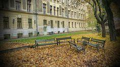 Az udvar ősszel