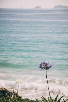 Ponderation — deeplovephotography: instagram   flickr  ...