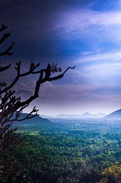 Sri Lanka-travel inspiration | Visit the link to read more about travelling Sri Lanka