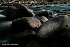 Wasser und Steine Entlebucher, Pictures, Animals, Water, Stones, Photos, Animaux, Animal, Animales