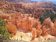 Wonder of nature in Bryce canyon