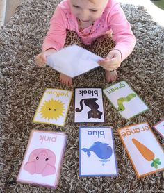 Color Sorting Cards For Toddlers