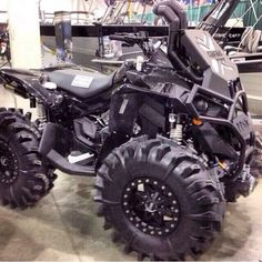 Mean looking can-am renegade