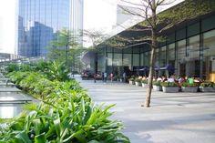 Places To Visit, Street View, Plants, Flora, Plant, Places Worth Visiting