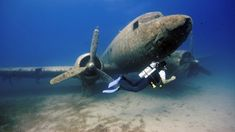 Diving the Dakota by Rico Besserdich Statues, Dove Images, Life Aquatic, Underwater World, Underwater Ruins, Shipwreck, Ocean Life, Abandoned Places, Snorkeling